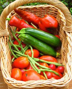 2-July 25 harvest