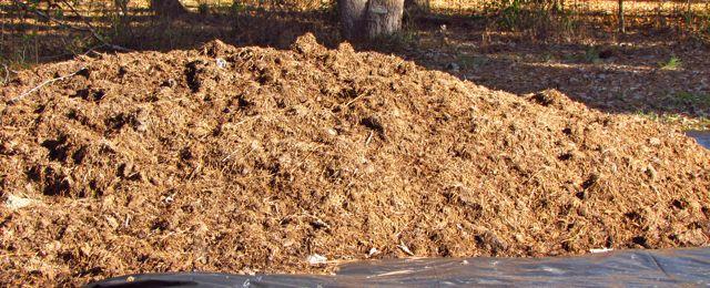 Organic fertilizer piedmont gardener for Mushroom soil