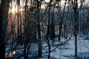 As the sun climbed higher, the landscape sparkled with icy diamonds.