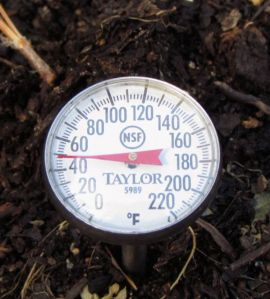 If the soil temperature is too cold, forget about it.