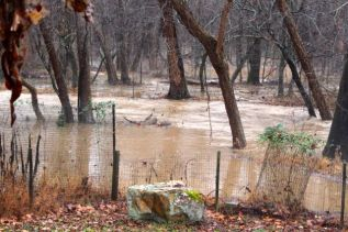That's the northeast corner of our backyard fence. During Hurricane Fran, the water surrounded the boulder, but this flood remained outside the fence, barely.