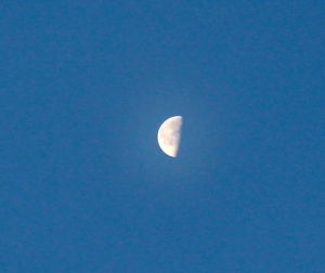 Morning moon on Winter Solstice eve