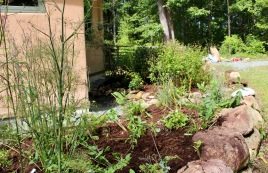Mulched side bed