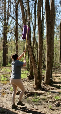 Dr. Oten raises the trap on her extension pole.